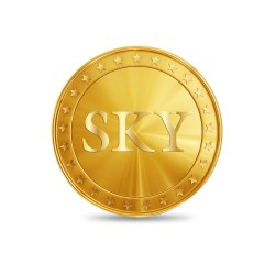 8 GRAMS GOLD COIN -24KT